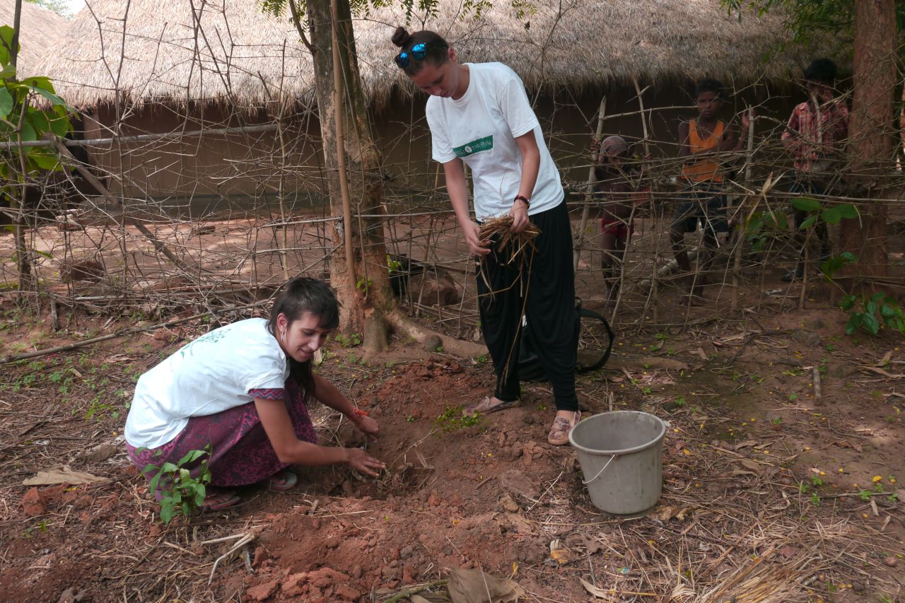 3. Activities conducted in Planting Cities: links between ...